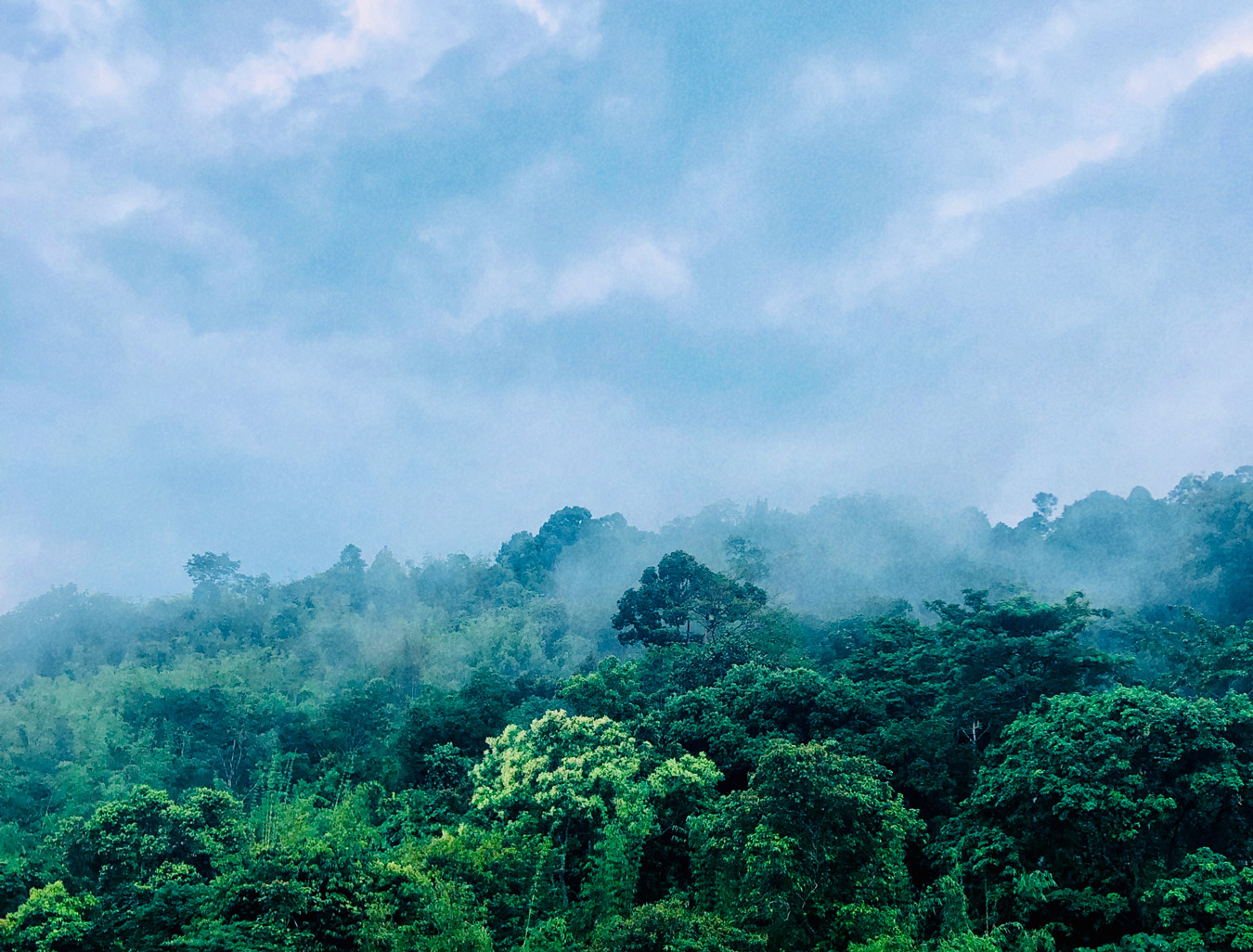 Views at Fraser's hill, forests and sky, Highlands, highland, Pahang, Bukit Frasers
